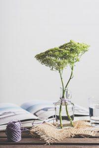 Nederlands Feng Shui Register - Glazen vaas met groene tak