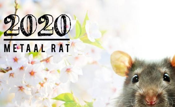 2020 – HET JAAR VAN DE METAAL RAT